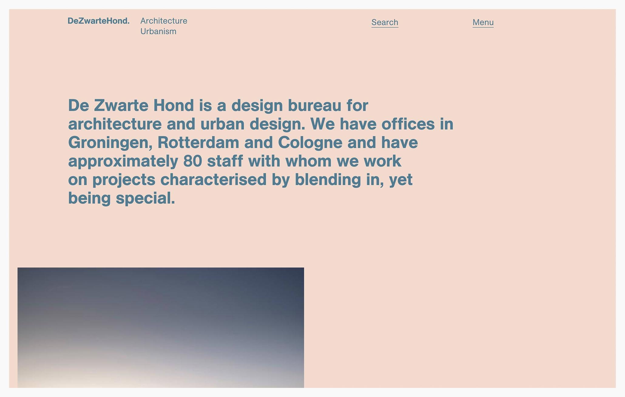 De Zwarte Hond - Best Architecture Website of 2019